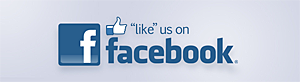 Like Us on Facebook - Expression In Metal